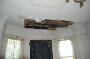 Some of the plaster damage we must repair.
